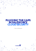 img whitepaper: plugging the gaps in salesforce cloud security